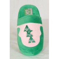 Alpha Kappa Alpha Slippers